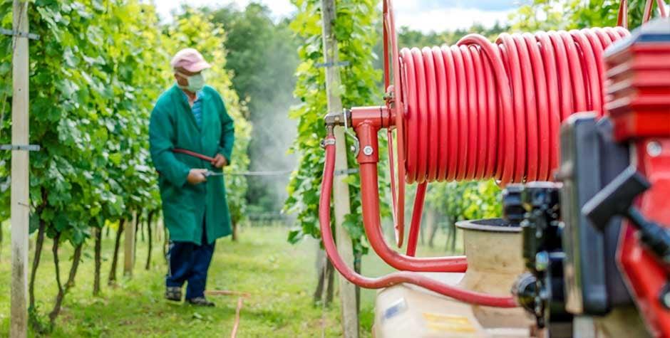 spraying_crop_from_hose