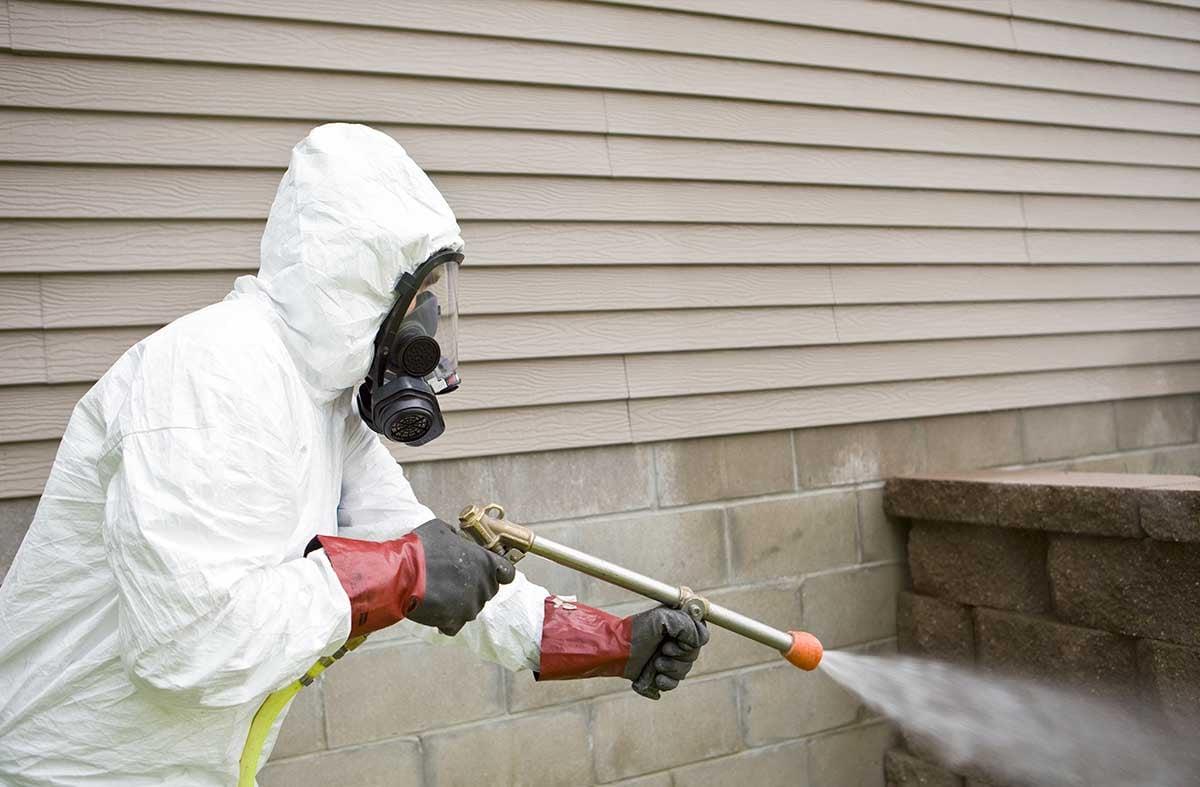 pest_control_operator_spraying_around_home