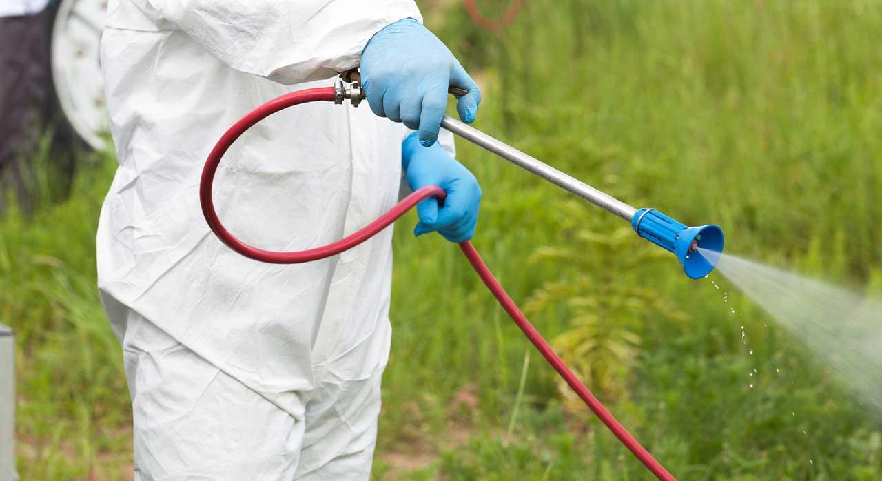 pest_control_operator_spraying